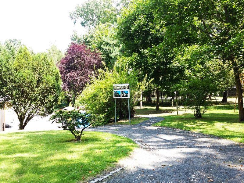 Kamień Śląski ogród